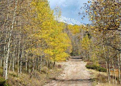 Natural Landscape - Bed & breakfasts & inns of Colorado Association