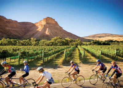 Cycling Through Vineyards - Bed & breakfasts & inns of Colorado Association