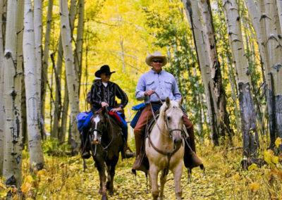Scenic Beauty - Bed & breakfasts & inns of Colorado Association